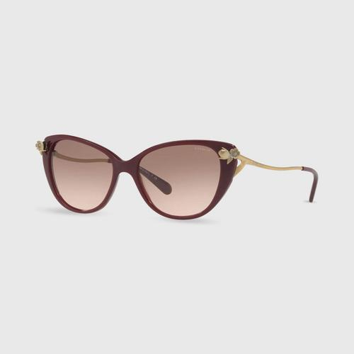 COACH Cat-eye Acetate Women Sunglasses 0Hc8242Bf 552011 (56mm.)