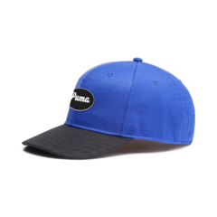 Puma PUMA 91074 worker Cap - Surf The Web