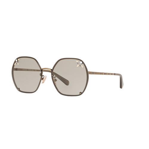 蔻驰 (COACH) 女士太阳眼镜 HC7095
