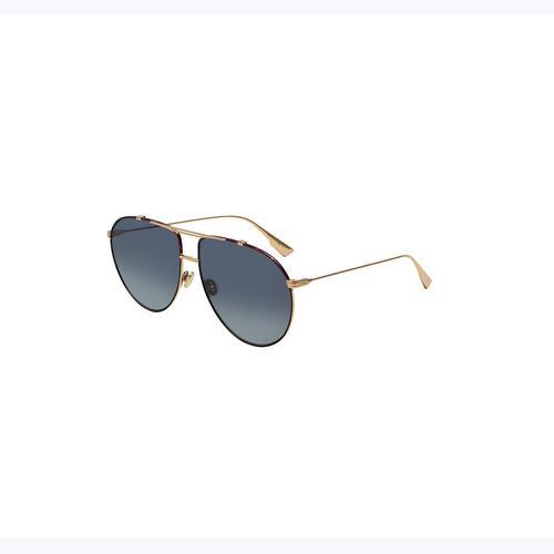 DIOR DIORMONSIEUR1 Sunglasses