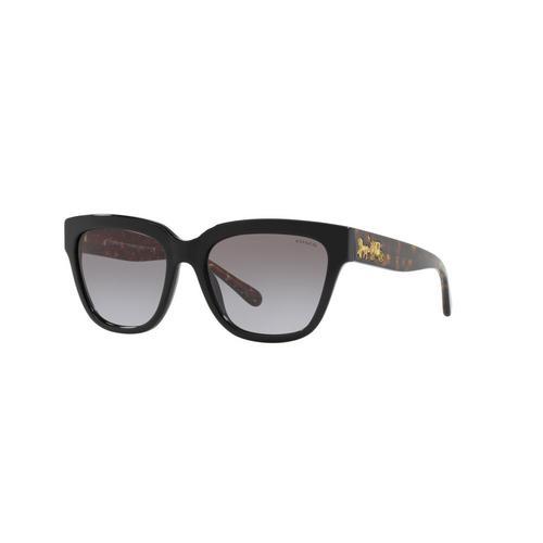 COACH Black Acetate Sunglasses 0HC8262F50021155